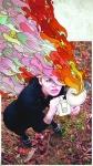 Illustrations-by-Angel-Perez-Guzman-38